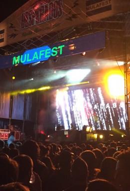 Mulafest 2015. AEO
