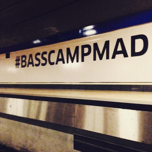 basscampmad_davidarias