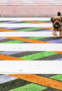 fm-funnycross-coloridos-pasos-peatonales-de-madrid-por-christo-guelov-02